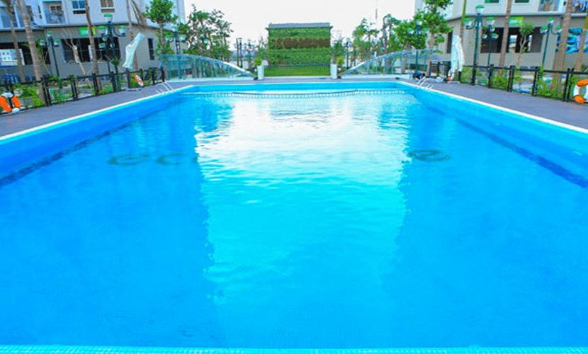 bể bơi chung cư ecohome 3 đông ngạc